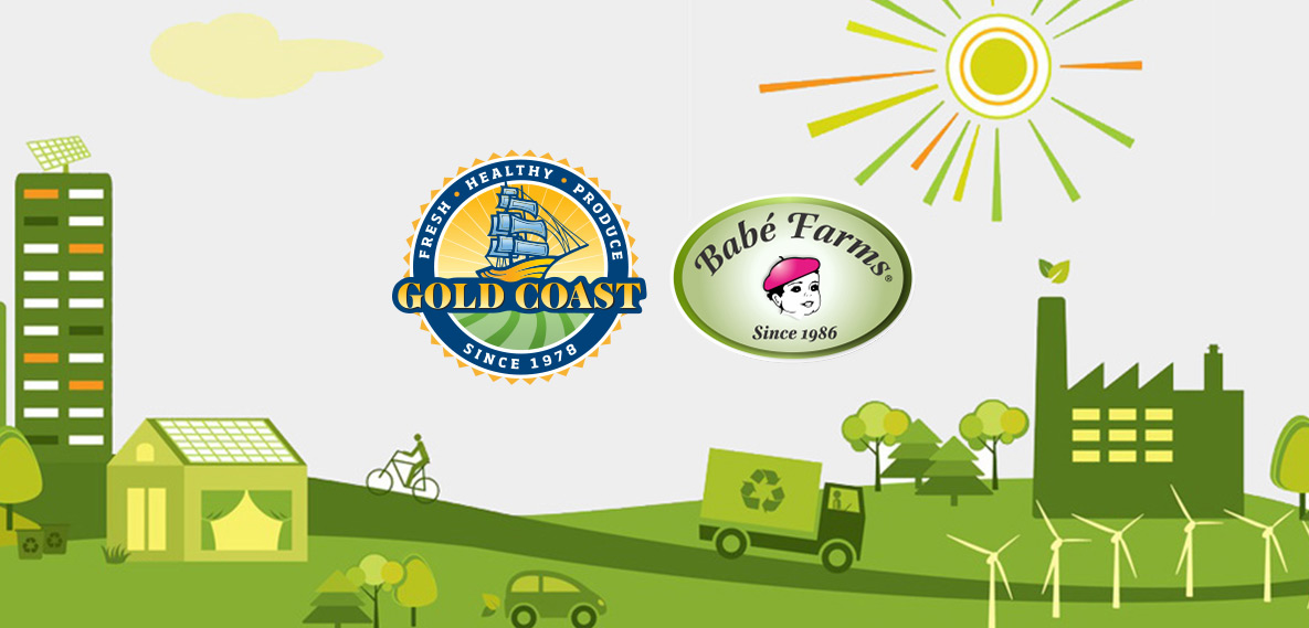 Gold Coast Cogeneration